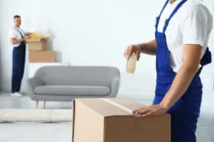 professional movers weekday moving