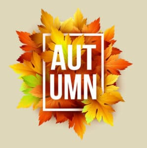 Autumn best time of year moving and storage units available